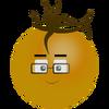 Spunky-sam-orange
