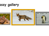 Challenge: A classy gallery