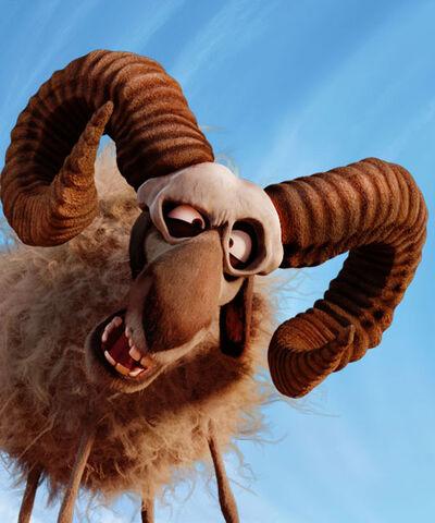 File:Nora the Merino sheep.jpg