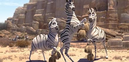File:Cheerleader Zebras.jpg
