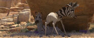 Khumba and his mother