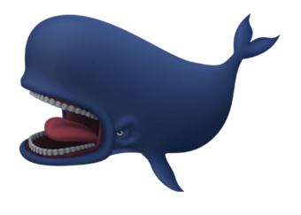 Risultati immagini per balena