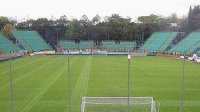 Stadio Artemio Franchi-Montepaschi Arena