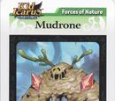 Mudrone - AR Card
