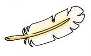 Pluma del angel en mm