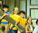 The Brady Bunch Gang