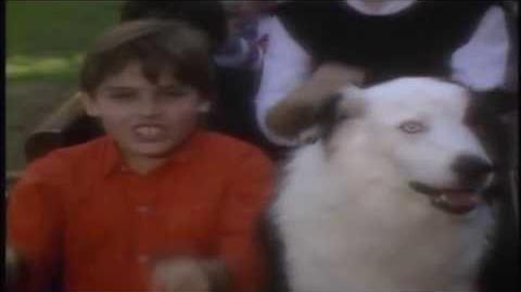 Kidsongs - Daylight Train -Original version- HD -1080p-
