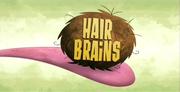 46-1 - Hair Brains