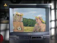 Edzio w telewizji