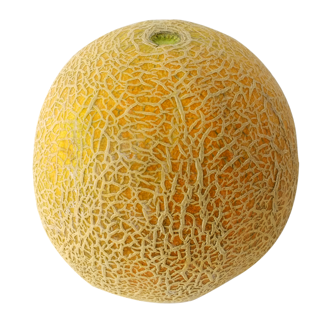 Kisspng-honeydew-cantaloupe-galia-melon-merqueo-poef-5af0f800a46a58.1960576815257415686735