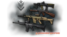 Commando weapons