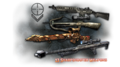 Sharpshooter Weapons.png