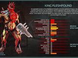 King Fleshpound