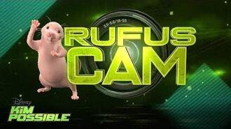 Rufus Cam Kim Possible Disney Channel Original Movie