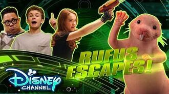 Find the Mole Rat🔍 Kim Hushable Disney Channel Original Movie