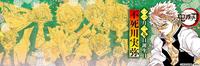 Sanemi Birthday Banner