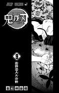 Kimetsu no Yaiba V9 TP