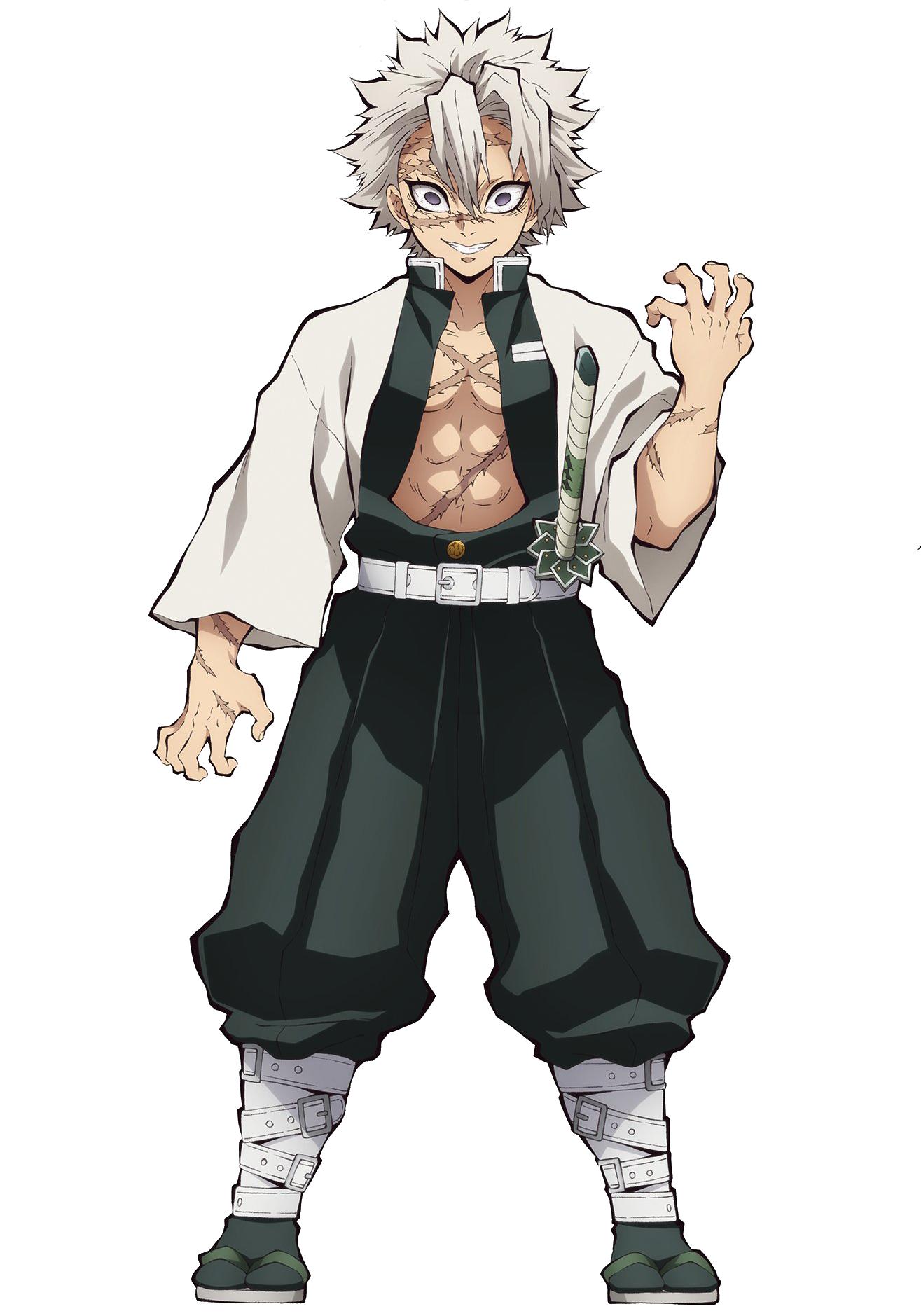 Sanemi Shinazugawa | Demon Slayer | Wind Hashira Minecraft Skin