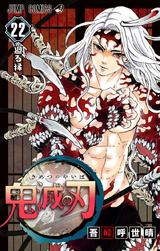 Kimetsu no Yaiba V22