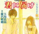 Kimi ni Todoke Light Novel Volume 03