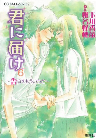 Kimi ni Todoke Light Novel v06 cover