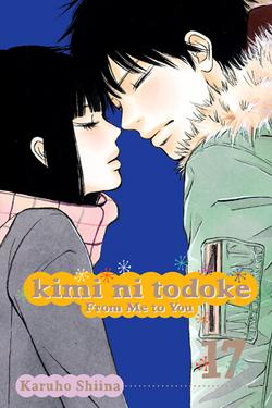 Kimi ni Todoke Manga v17 cover en