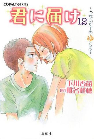 File:Kimi ni Todoke Light Novel v12 cover.png