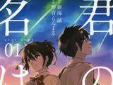 Kimi no Na wa. (Manga)