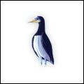 BoraBora Bird