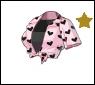 Starlet-top-short55