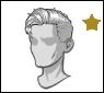 Star-hair-hair98