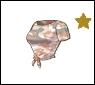 Starlet-top-short28