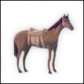 MaipValley Horse