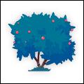 SantaBarbara Tree