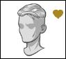 Star-hair-hair65