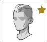 Star-hair-hair12