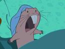 Ill-Suited Rufus-freaks