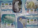 Arctic & Snow Animal Animation Stickers