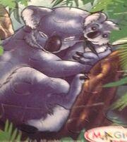 KoalaPuzzle