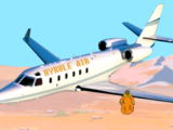 Hyrule Air