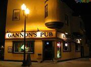Gannon Pub