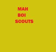 My Boy Scouts