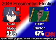 2048 Election results