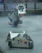 Pendulum flips Hedgebot Impact pushes Conker 3