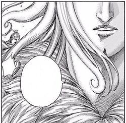 Shi Ba Shou's face