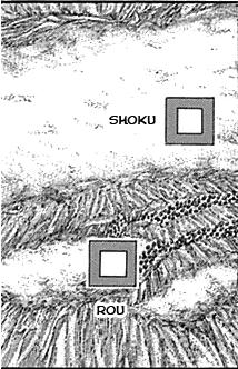 Rou and shoku