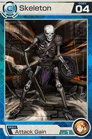 Skeleton C04