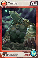 Turtle UC04