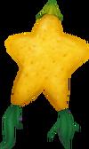 Papu-Frucht