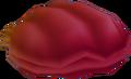 Muschel (Feuer) KH